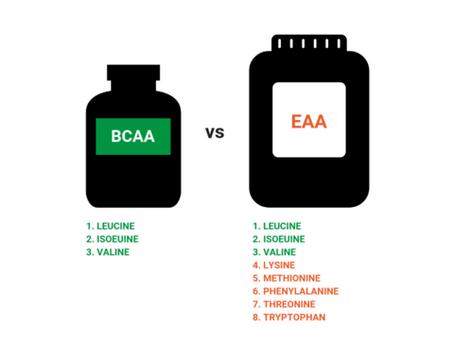 BCAA's e EAA's - Milagre da suplementação ou uma aldrabice?