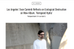 Evan Caminiti unveils new LP of vaporous eco-dread electronics
