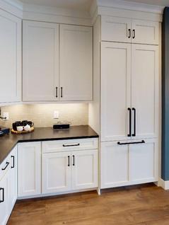 Brio-Design-Homes-Kitchen(1).jpg