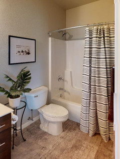 CLE-Consulting-Bathroom(2).jpg