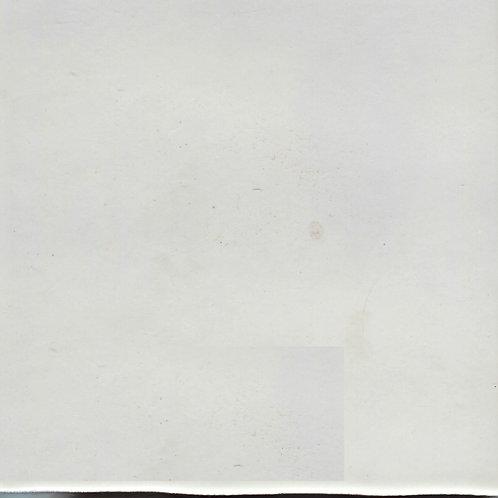 Blizzard White Matte-310-655 6x6