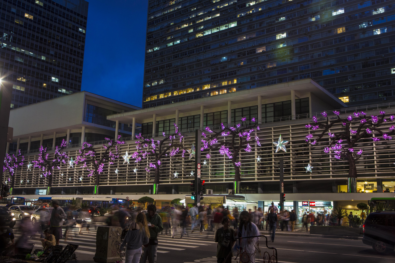 Cerejeiras gigantes - Av. Paulista 2