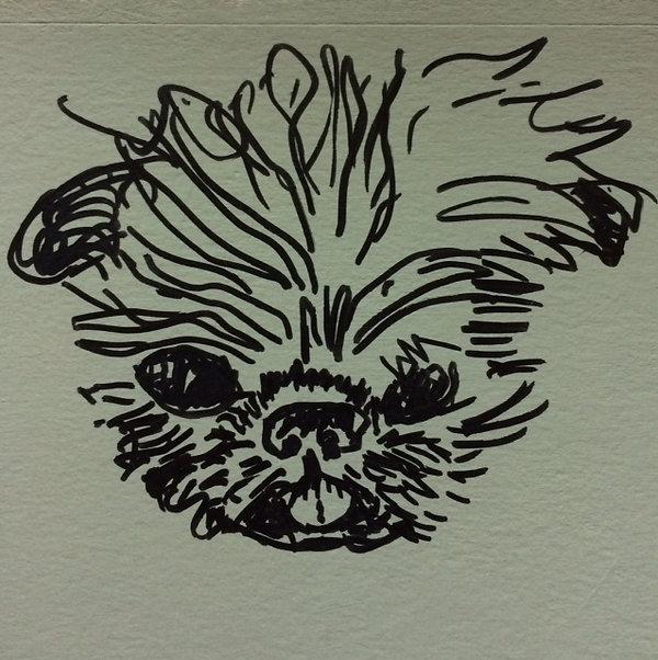 Linus Head for Logo.jpg