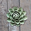 Thumbnail: Chive Coral Ceramic Flower Collection