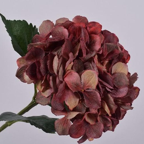 Hydrangea Stem - Light Brown