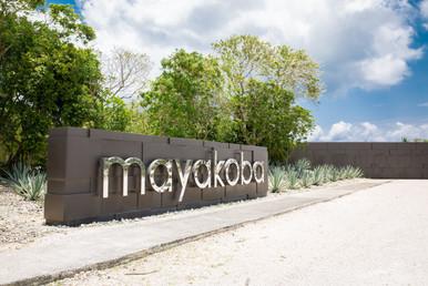 Thermo Fisher Mayakoba property-22.jpg