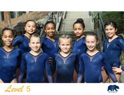 Team Level 5