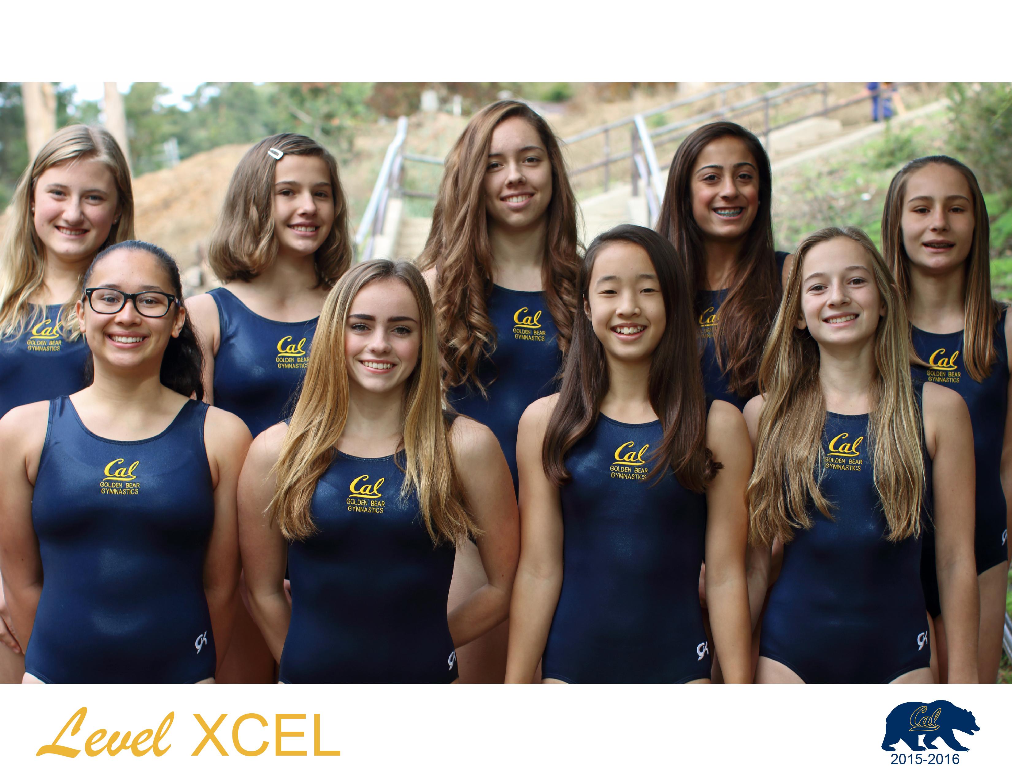 Team Level XCEL