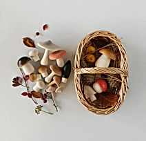 Moon-Picnic-Forest-Mushrooms-Basket-web-