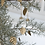 Couronne de feuilles en laiton