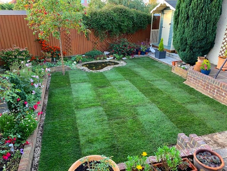 Lawn - After