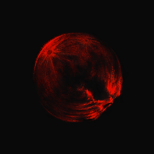 bloodmoon6.png