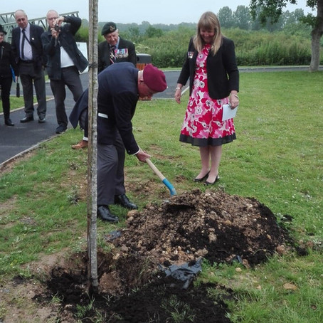 Tree Planting in Normandy