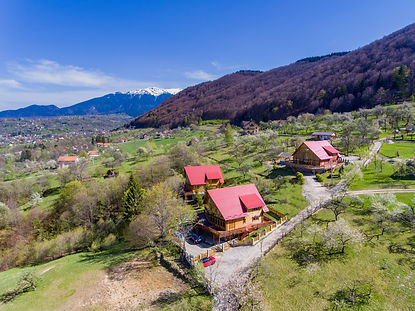 Carpathian Log Home chalets