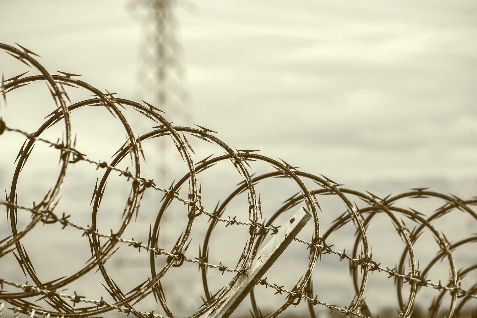 razor-barbed-wire-security-fence-califor