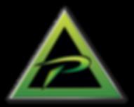 10X10_triangle_350dpi_web.png
