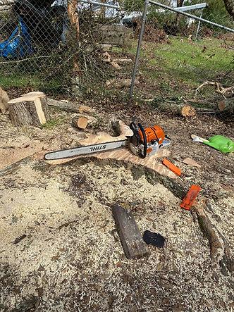 Round Rock stump grinding
