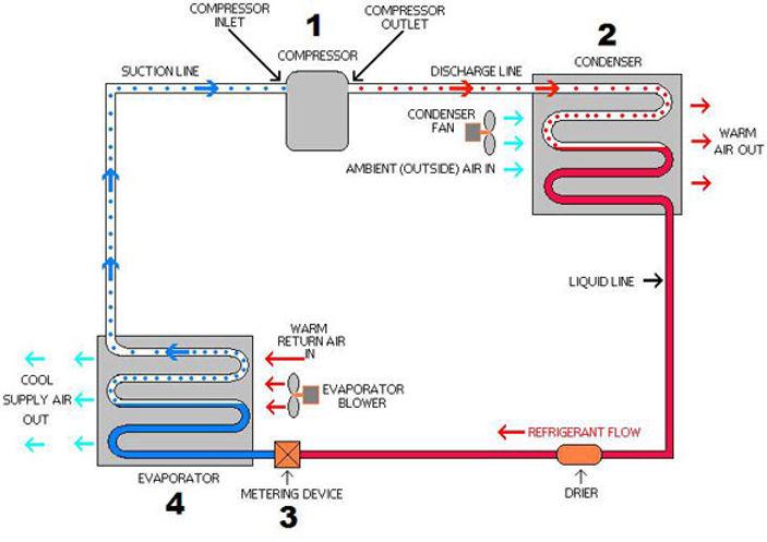 The Refrigeration Process.jpeg
