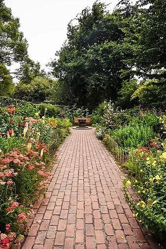 Georgetown landscaping.JPG