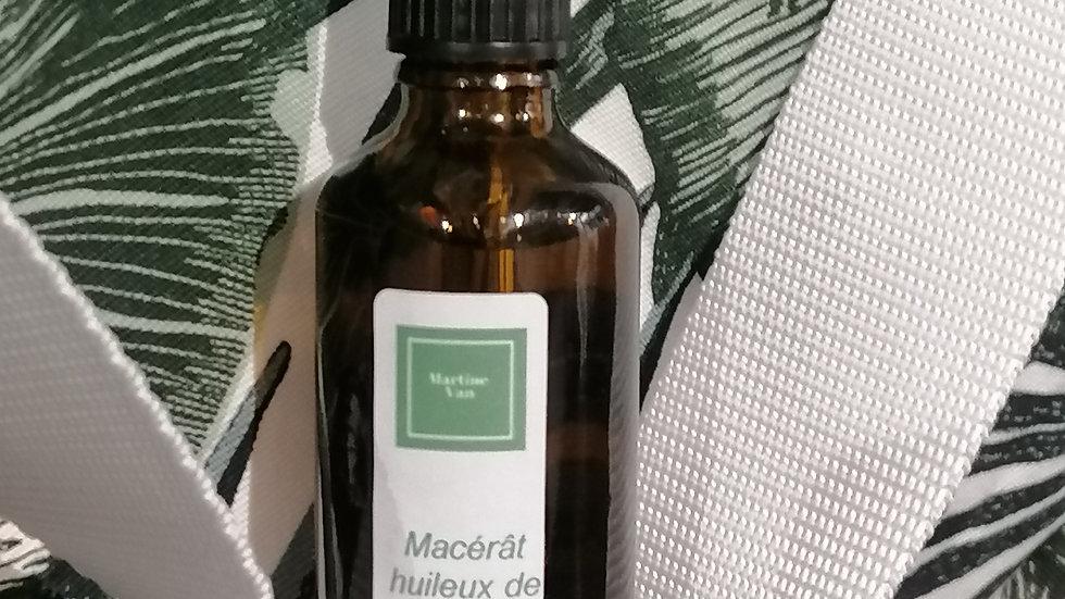 Macérât huileux de Lavande Bio 50 ml