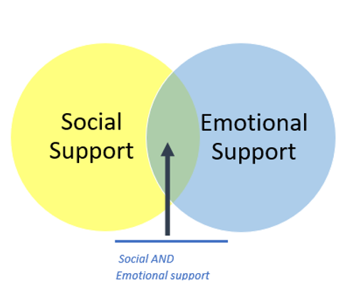 Social and emotional support .png