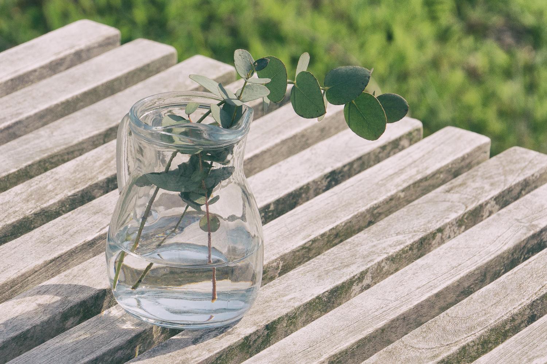 ガラスハウス