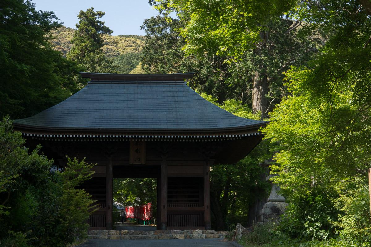 新緑の普門寺
