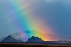 見たこともない太さの虹
