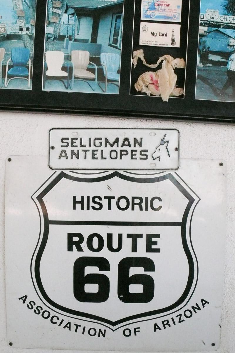 セリグマン(Seligmnn)