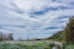 細谷海岸-07