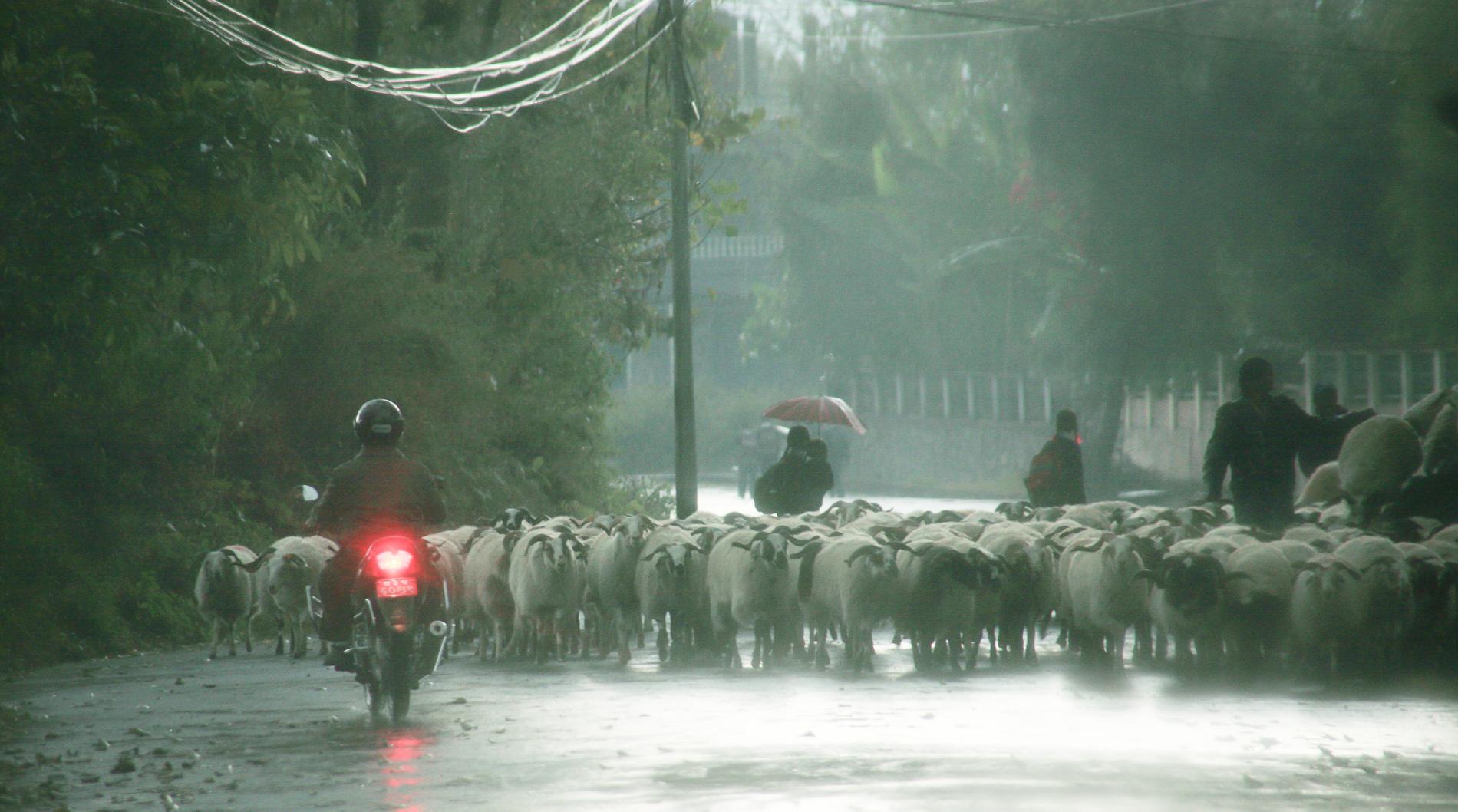 ネパール・カトマンズ郊外