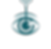 Wijnholds_Pictogrammen_CMYK-blauw-brilve