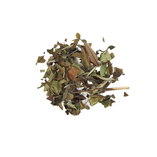 Revival Tea Company- White Tea