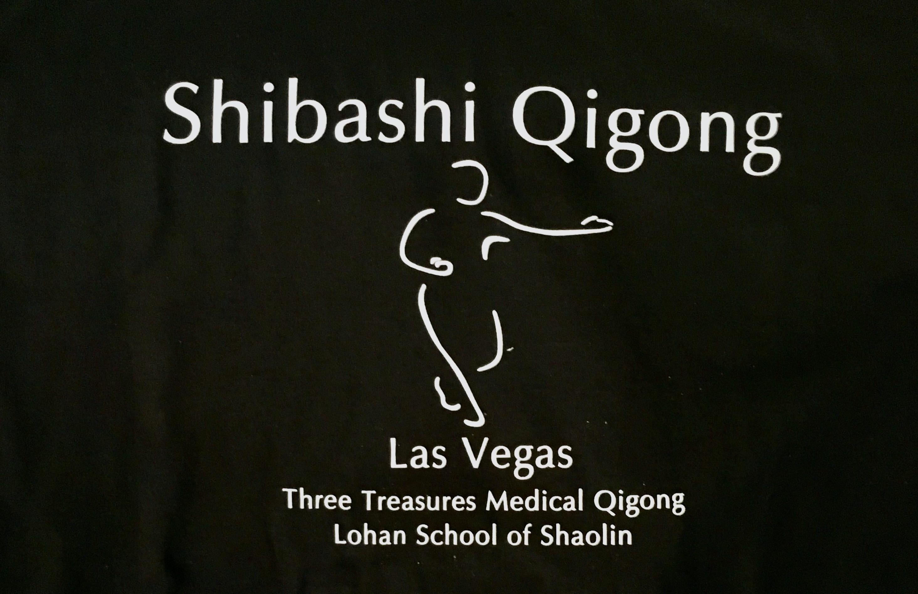 Copy of Shibashi Training