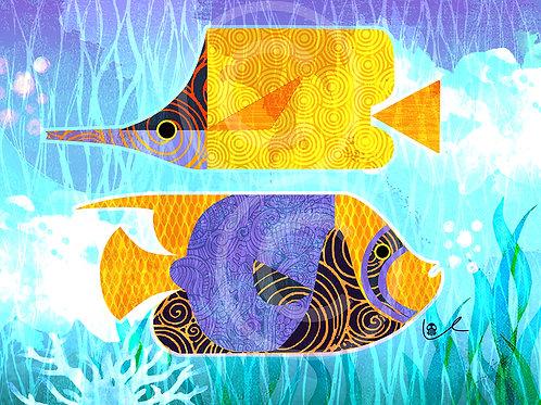 'Crazy Fish'