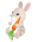 Bunny_HomePage.png
