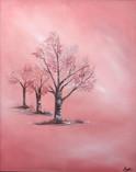 Pink Glory
