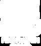 STM logo blanco.png