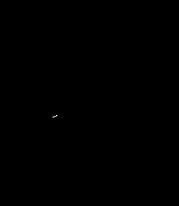 Cayume_logo.png