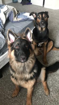 Kattleya and Brahm long coat black and r