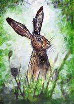 [EDIT] hare.jpg