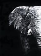 Elephant - FINAL CMYK web.jpg