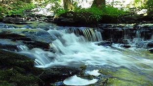 Flowing waters of spring
