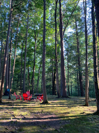 "Snugglers Notch ""back yard"" firepit area with towering trees"