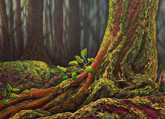 """The Clearing / 30"""" x 40"""""""