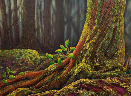 """The Clearing   30"""" x 40""""   Acrylic   $3600"""