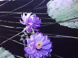 Purple Floaters