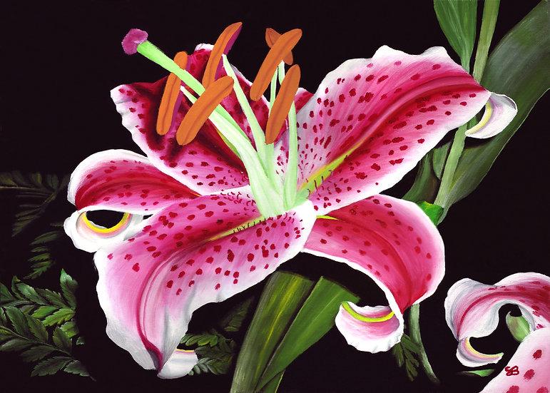 """Stargazer Lily 8""""x10"""" print"""