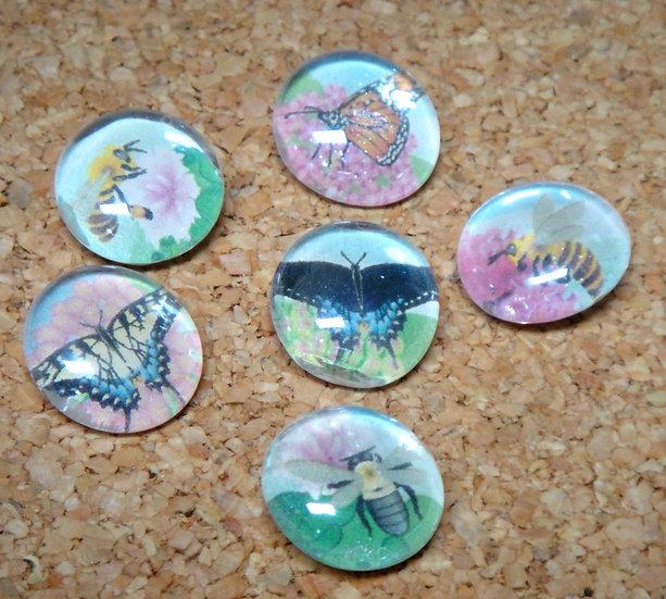Pollinators Thumbtacks or Magnets