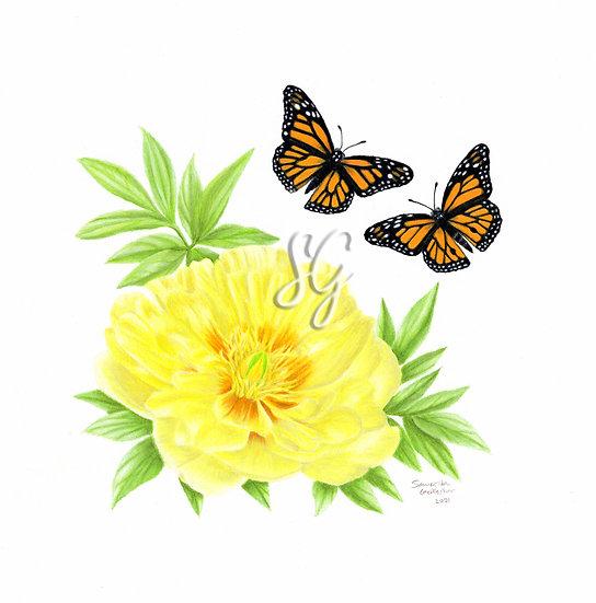 "Monarchs and Peonies 8""x10"" Print"